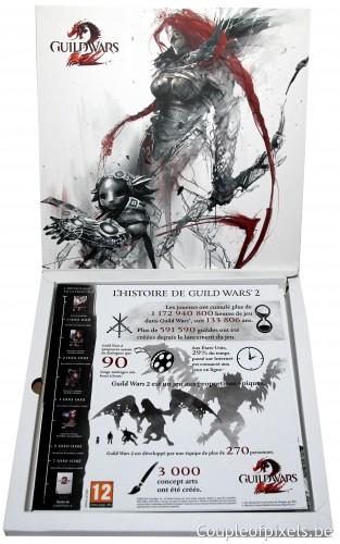 guild wars 2, kit presse, déballage