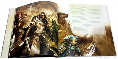 guild wars 2, kit presse, déballage