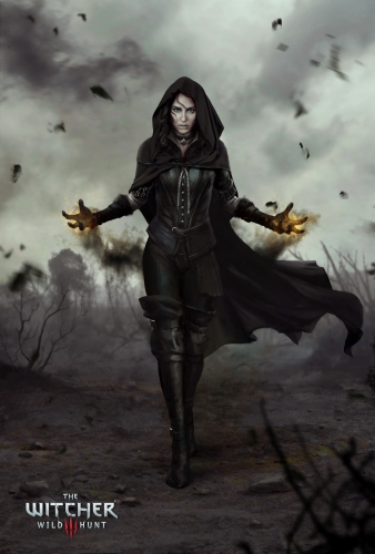 the witcher 3,wild hunt,test,avis,rpg