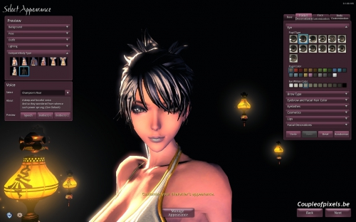 blade and soul,preview,ncsoft,mmo,free to play