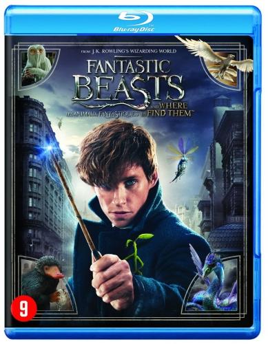 les animaux fantastiques,fantastic beasts,blu ray,dvd,avis,critique
