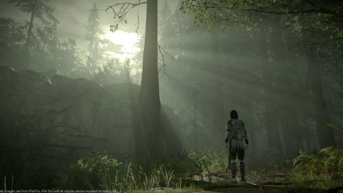 shadow of the colossus,remake ps4,test,avis