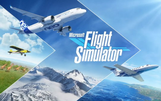Flight Simulator - Test